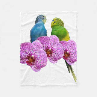 Cobertor De Velo Budgie com orquídea roxa