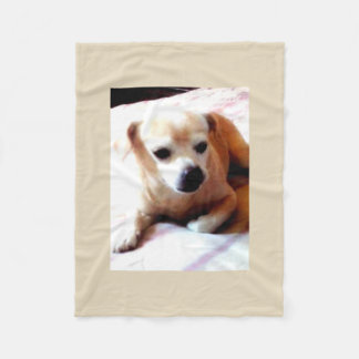 Cobertor De Velo Cão bonito