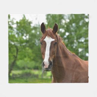 Cobertor De Velo Cara do cavalo com marcação