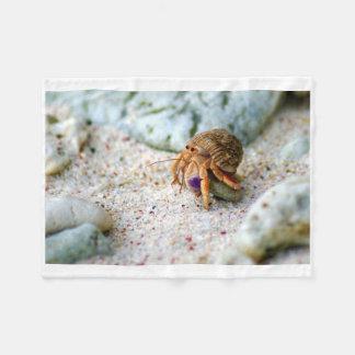 Cobertor De Velo Caranguejo da areia, Curaçau, ilhas das Caraíbas,