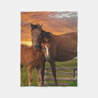 Cobertor De Velo Cavalo e cobertura do poney