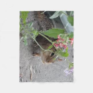 Cobertor De Velo Chipmunk Sneaky em flores do Lantana
