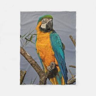 Cobertor De Velo Cobertura azul do velo de Goldie