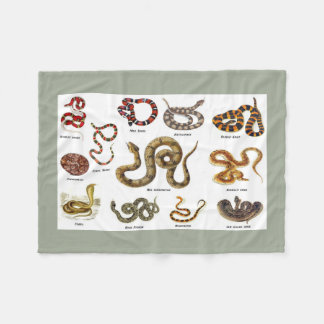 Cobertor De Velo Cobertura da identificação do cobra