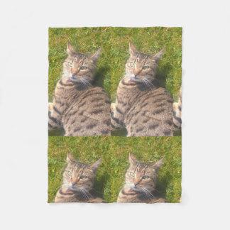 Cobertor De Velo Cobertura do gato