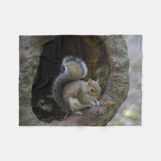 Cobertor De Velo Cobertura do velo do esquilo