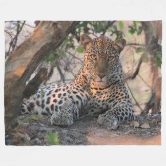 Cobertor De Velo Cobertura do velo do leopardo