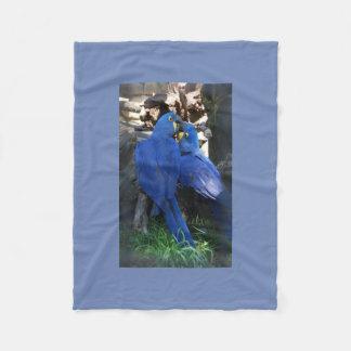 Cobertor De Velo Cobertura dos papagaios
