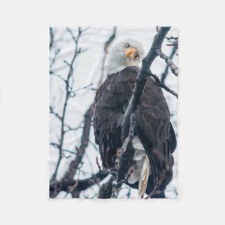 Cobertor De Velo Cobertura óbvia de Eagle do luxuoso da curiosidade