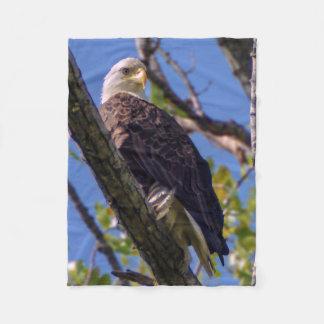 Cobertor De Velo Cobertura pequena do velo da águia americana