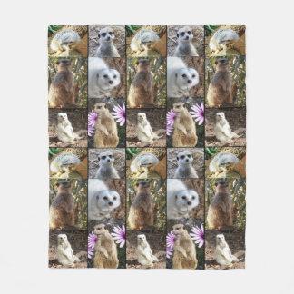 Cobertor De Velo Colagem da foto de Meerkat, cobertura média do