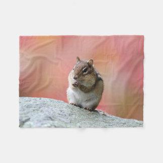 Cobertor De Velo Contemplando o chipmunk