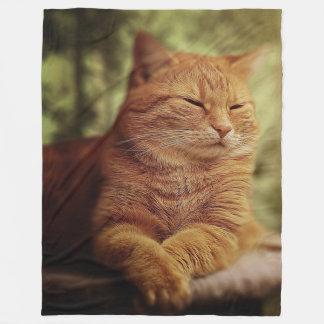 Cobertor De Velo Gato alaranjado sonolento na grande cobertura do