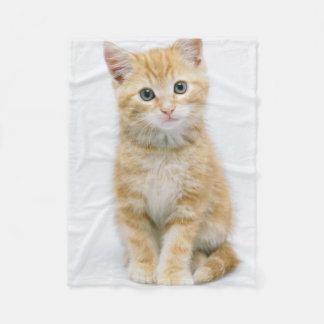 Cobertor De Velo Gato malhado da laranja doce