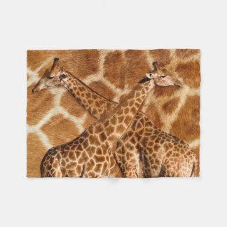 Cobertor De Velo Girafa 1A