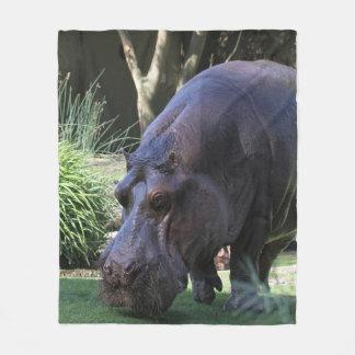 Cobertor De Velo Hipopótamo AJ17