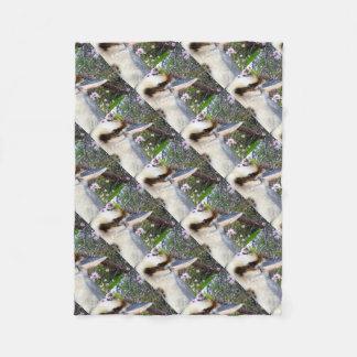 Cobertor De Velo Kookaburra ao lado de uma árvore da flor,