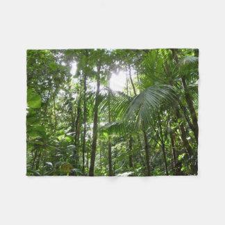 Cobertor De Velo Luz solar com o verde tropical do dossel da