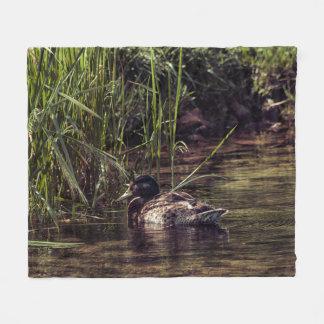 Cobertor De Velo Na borda da lagoa