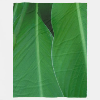Cobertor De Velo O lírio de canna verde sae da foto