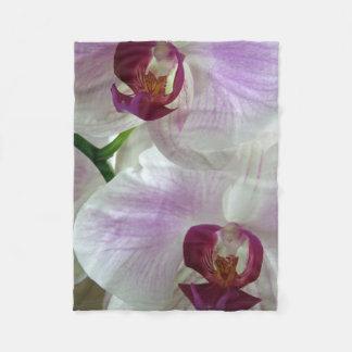 Cobertor De Velo Orquídeas de Phaleonopsis