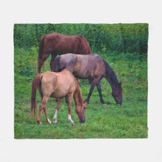 Cobertor De Velo Pastando a cobertura do velo dos cavalos