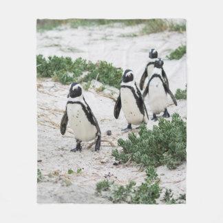 Cobertor De Velo Pinguins na praia