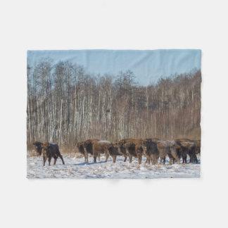 Cobertor De Velo Rebanho do bisonte