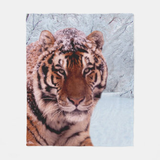 Cobertor De Velo Tigre e neve