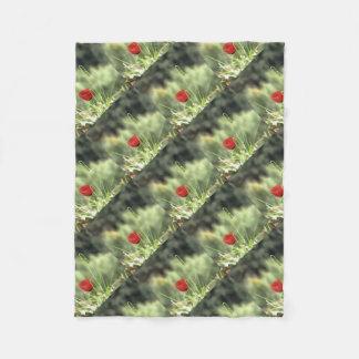 Cobertor De Velo Uma papoila