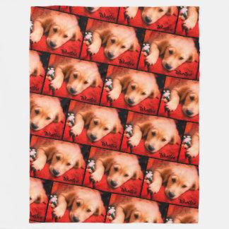 Cobertor De Velo Winston o filhote de cachorro dourado, cobertura