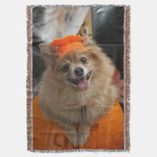 Cobertor Filhote de cachorro Foxy de sorriso de Pomeranian