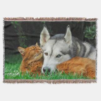 Cobertor Gato somaliano e de amigos do rouco Siberian