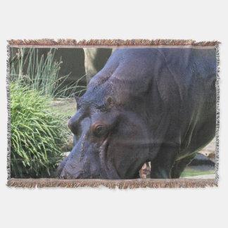 Cobertor Hipopótamo AJ17