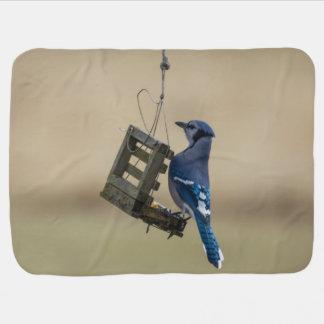 Cobertor Para Bebe Jay azul de balanço