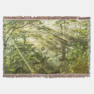 Cobertor Parque de Queulat, paisagem da floresta do