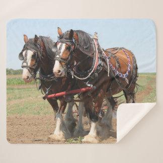 Cobertor Sherpa Ploughing bonito dos cavalos do clydesdale