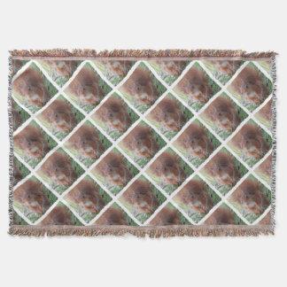 Cobertor SQUIRREL ESQUILO by Louis Glineur