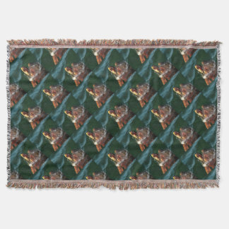 Cobertor Tartaruga de boba