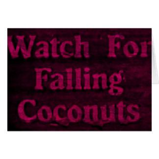 Cocos de queda cartão