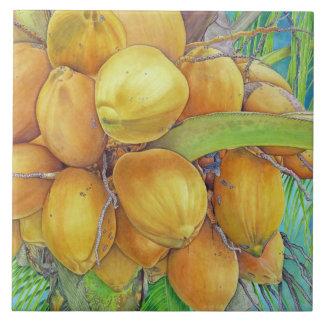 Cocos dourados