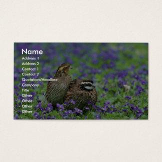 Codornizes do norte cartão de visitas