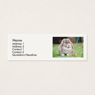 Coelhinho da Páscoa Cartão De Visitas Mini