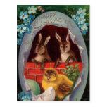 Coelhinhos da Páscoa e cartão do vintage do pintin Cartões Postais