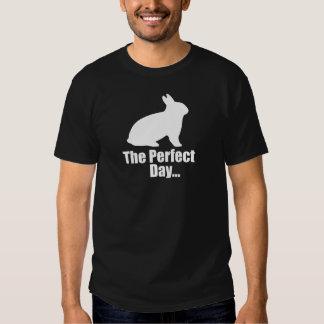 Coelho Camisetas