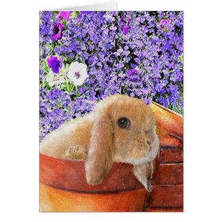coelho no cartão dos flowerpots
