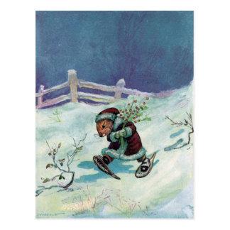 Coelho no casaco e nos sapatos de neve do inverno cartão postal