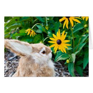 coelho no jardim cartão comemorativo