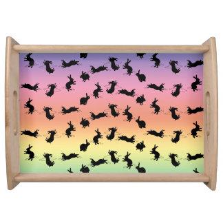 Coelhos de Binky que servem a bandeja (arco-íris)