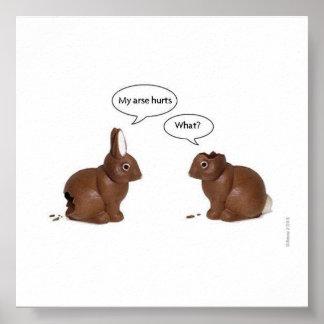 coelhos engraçados pôster
